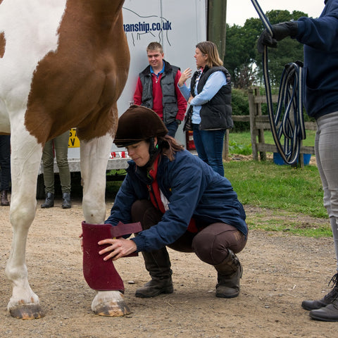 Leading and Loading the Less Easy Horse - Intermediate Course 27th-28th March 2021