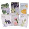 Nature Republic Real Nature Mask Sheet - The Style Quarter