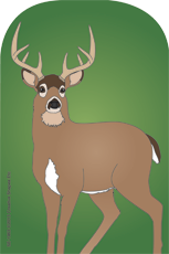 Picture of Large Notepad - Deer