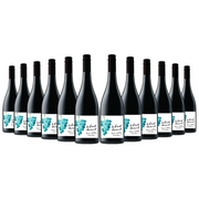 Vibrant Harvest Yarra Valley Pinot Noir 2019 (12 Bottles)