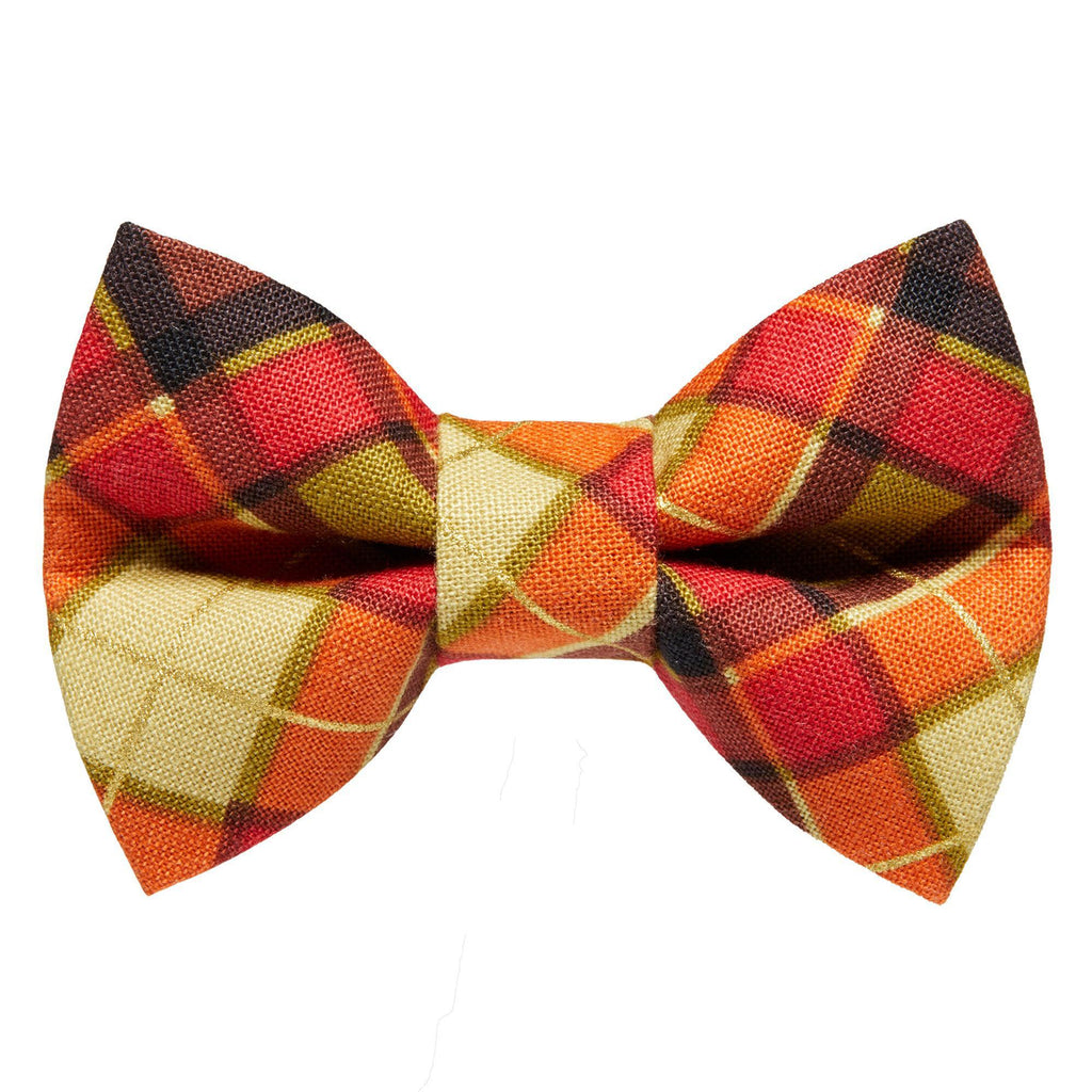 Sweet Pickles Cat Bow Tie