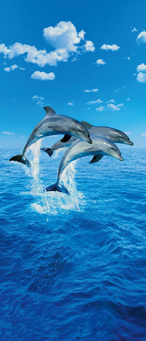 Wizard+Genius Three Dolphins Fotobehang 86x200cm | Yourdecoration.be