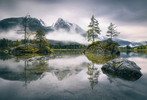Wizard+Genius Foggy Day Vlies Fotobehang 384x260cm 8-banen | Yourdecoration.be