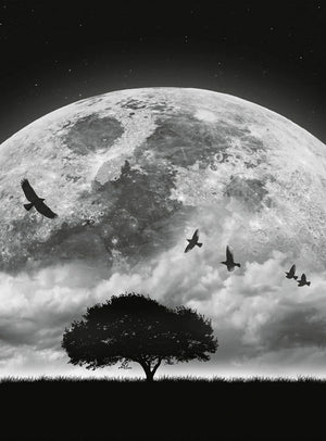 Wizard+Genius Moon and Birds Vlies Fotobehang 192x260cm 4-banen | Yourdecoration.be