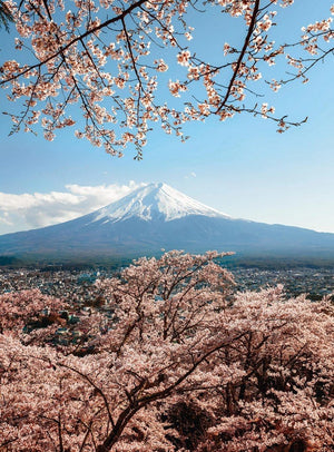 Wizard+Genius Mount Fuji in Japan Vlies Fotobehang 192x260cm 4-banen | Yourdecoration.be