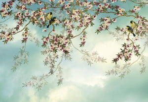Komar Sakura Fotobehang 368x254cm | Yourdecoration.be