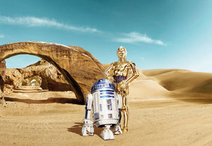 Komar Star Wars Lost Droids Fotobehang 368x254cm | Yourdecoration.be