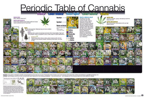 GBeye Periodic Table of Cannabis Poster 91,5x61cm | Yourdecoration.be