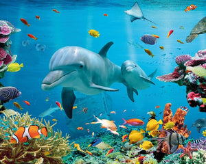 GBeye Tropical Ocean Poster 50x40cm | Yourdecoration.be