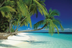 Pyramid Maldives Beach Poster 91,5x61cm | Yourdecoration.be