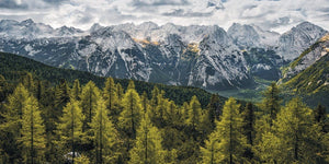 Komar Wild Dolomites Vlies Fotobehang 200x100cm 1-baan | Yourdecoration.be