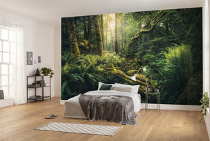 Komar Elves Cathedral Vlies Fotobehang 450x280cm 9-banen Sfeer | Yourdecoration.be