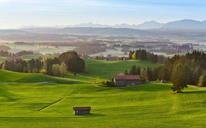 Komar Paradiesisches Bayern Vlies Fotobehang 450x280cm 9-banen | Yourdecoration.be
