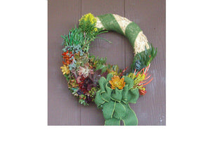 Straw Living Wreath of Growing Succulent Plants