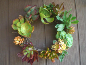Season of Color Growing Succulent Plants Grapevine Living Wreath...Simple Living Beauty...Spanish Moss and Grapevine Garland Living Wreath