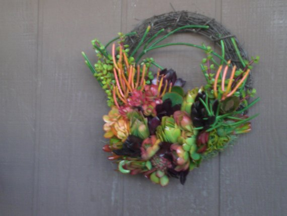 Winter Color 14 inch willow branches living wreath of succulent plants succulent cuttings succulent clippings