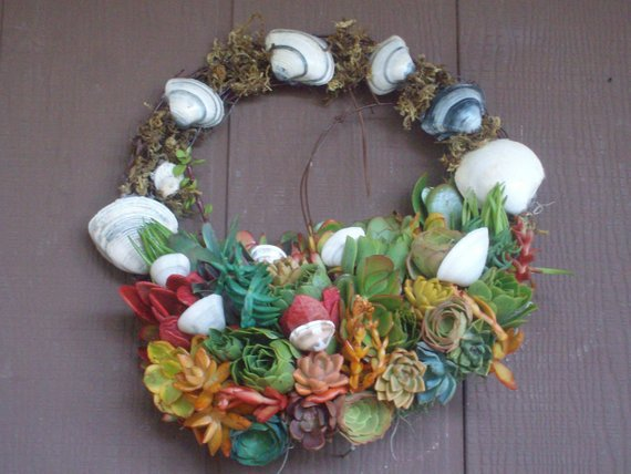Corona Isla Bonita...The Beautiful Island Living Wreath. Succulent Plants