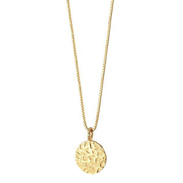 Capricorn Gold Coin Necklace