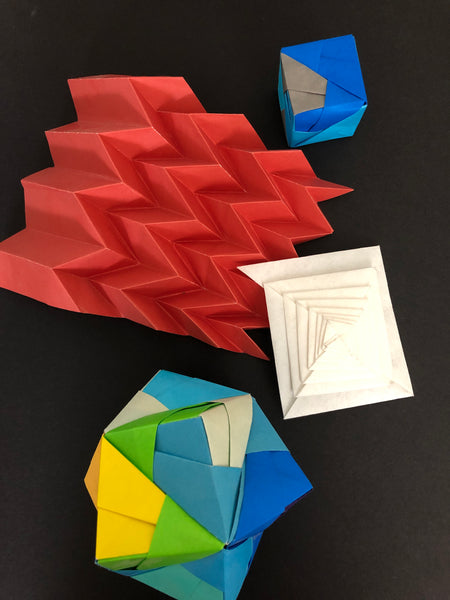 The Science of Origami