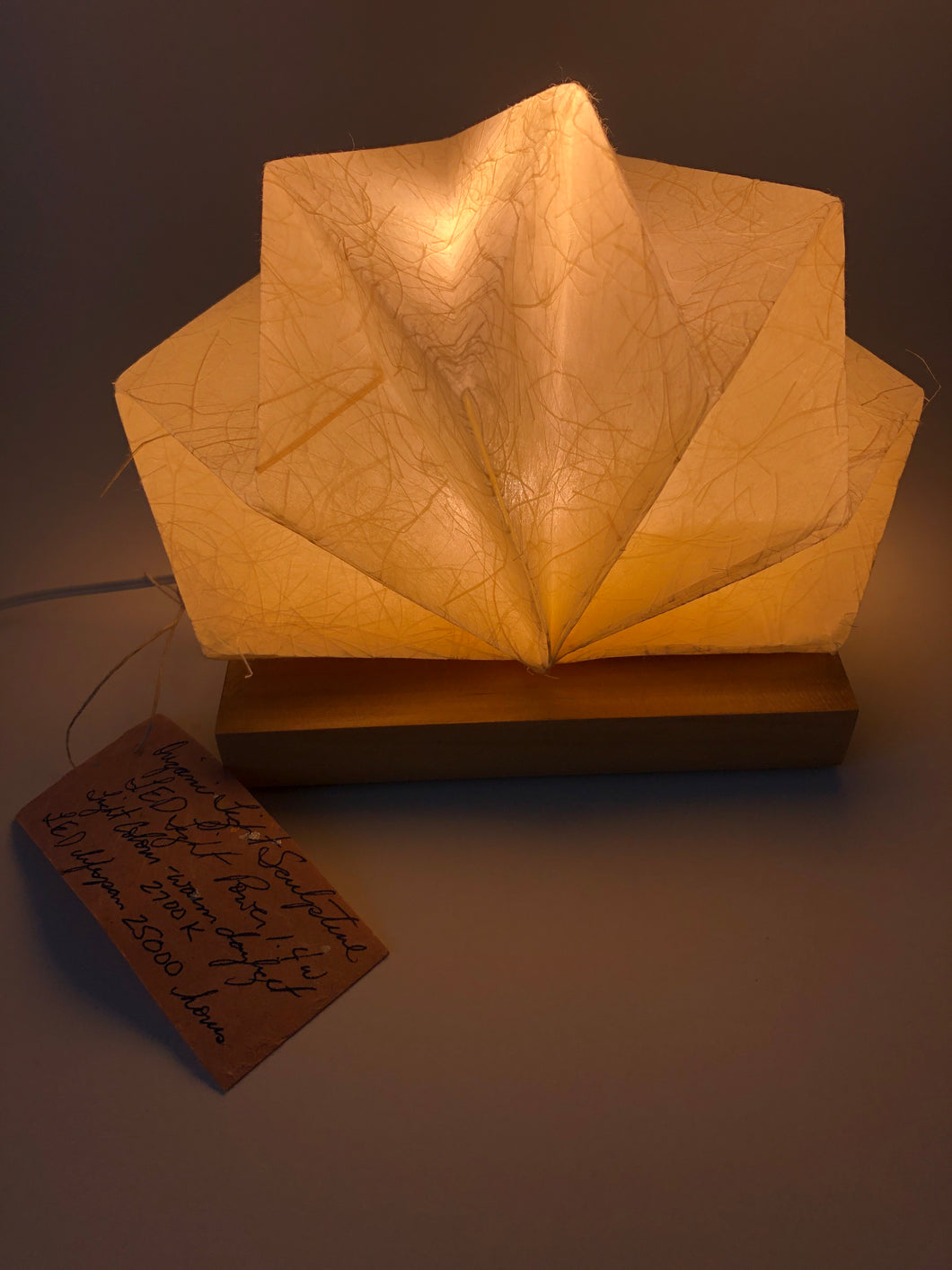 Origami Light Sculpture Burst 5