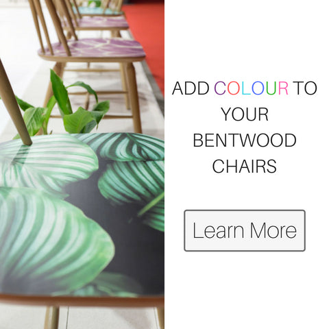 paged colours bentwood chairs