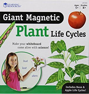 Giant Magnetic Plant Life Cycles - iPlayiLearn.co.za  - 1