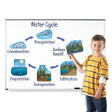 Giant Magnetic Water Cycle