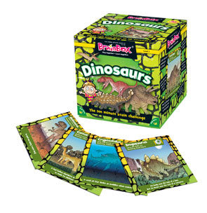 BrainBox Dinosaurs Junior - iPlayiLearn.co.za  - 1