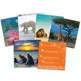 Wild About Animals Snapshots - Critical Thinking Photo Cards - iPlayiLearn.co.za  - 2