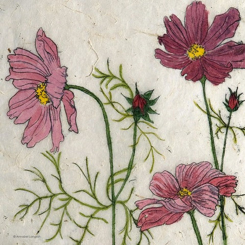 Mini Print Cosmos by Annabel Langrish