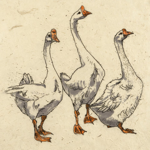Mini Print Three Geese by Annabel Langrish