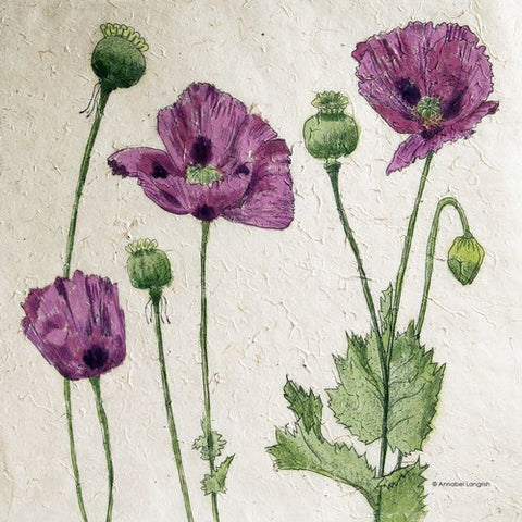 Mini Print Poppies by Annabel Langrish