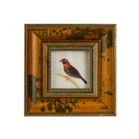 India Jane Palermo Frame with Print 3x3