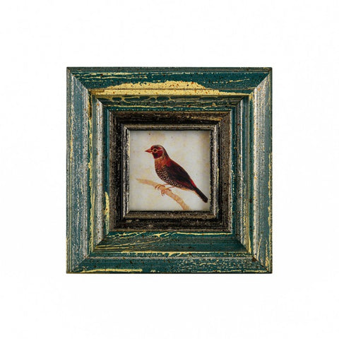 India Jane Caserta Frame with Print 3x3