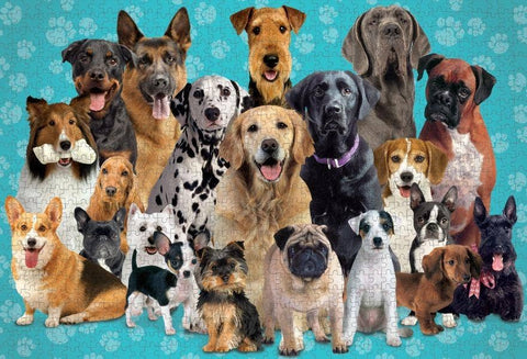 Delightful Dogs 1000 piece Jigsaw Puzzle