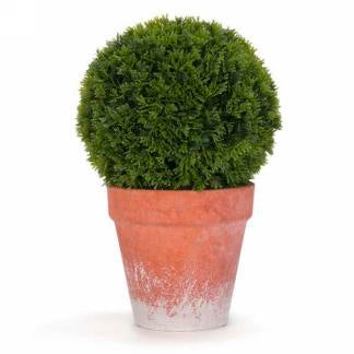 "10"" Grass a Ball in Pot"
