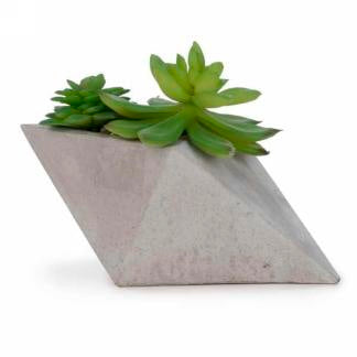 Slanted vase with Succulents