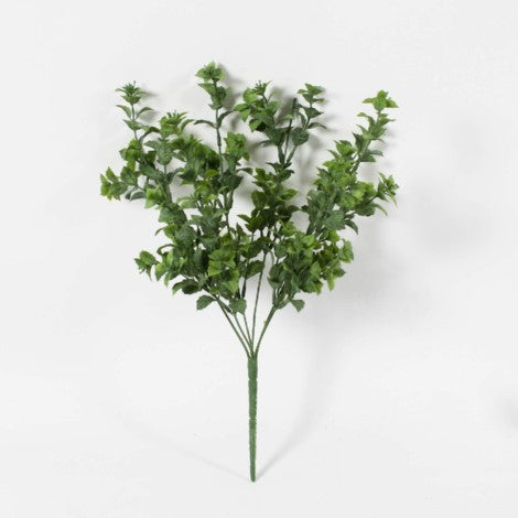 "19"" Peppermint Leaf Bush"