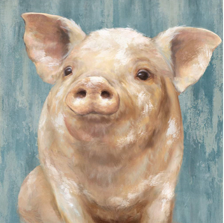 Pig - Canvas