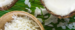 Organic Desiccated Coconut – More than Just a Garnish