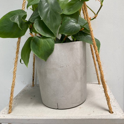 Hanging plant Shelve Rectangle