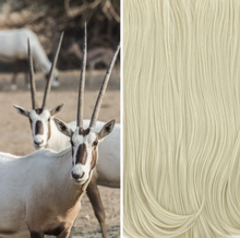Load image into Gallery viewer, LOXX Classic Straight - Arabian Oryx