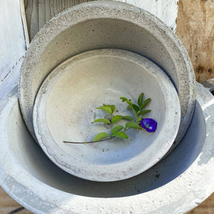 Cement Planter Bowl Large