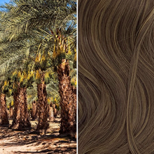 Load image into Gallery viewer, LOXX Classic Straight - Date Palm