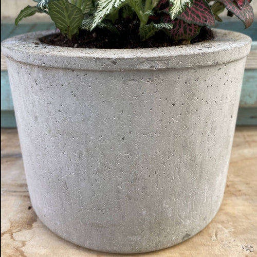 Cement Planter Round Cylinder Shape