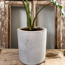 Load image into Gallery viewer, Cement Planter Cylinder Shape Large