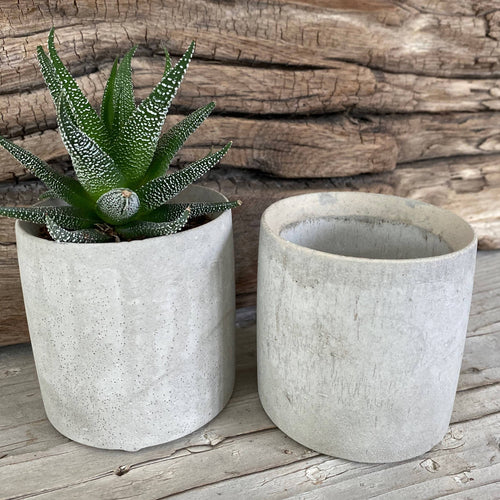 Small Round Cement Planter