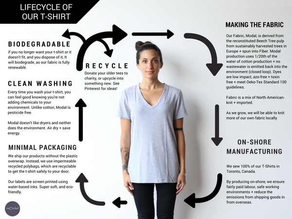 lifecycle of our t-shirt