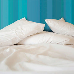 Allersoft Nonmembrane Duvet Cover