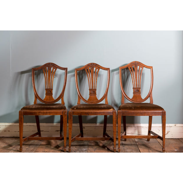 Six Oak Hepplewhite Style Chairs